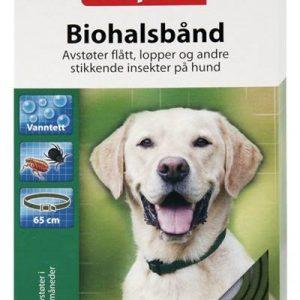 Flåtthalsbånd for hund
